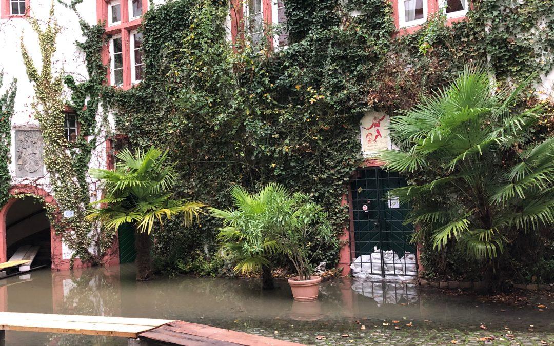 Lahnsteiner Fastnachtsmuseum vor Hochwasser geschützt